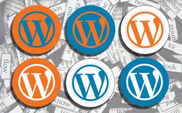 Kompletter OnPage Optimierungs Guide für WordPress